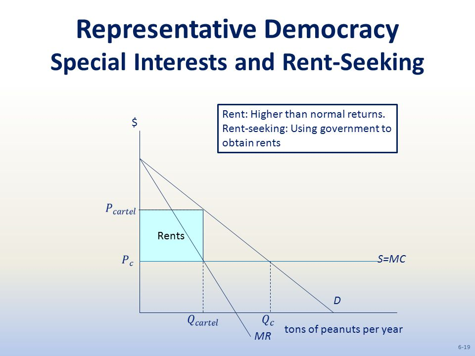 Representative Democracy Special Interests and Rent-Seeking