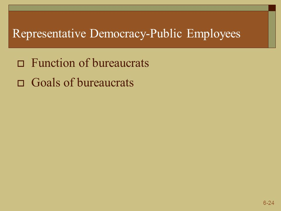 Representative Democracy-Public Employees