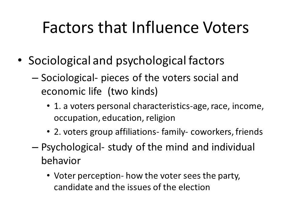 Factors that Influence Voters