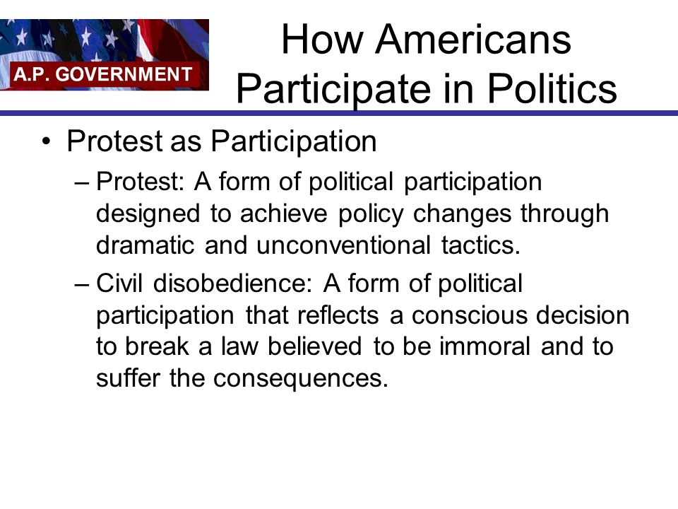 How Americans Participate in Politics