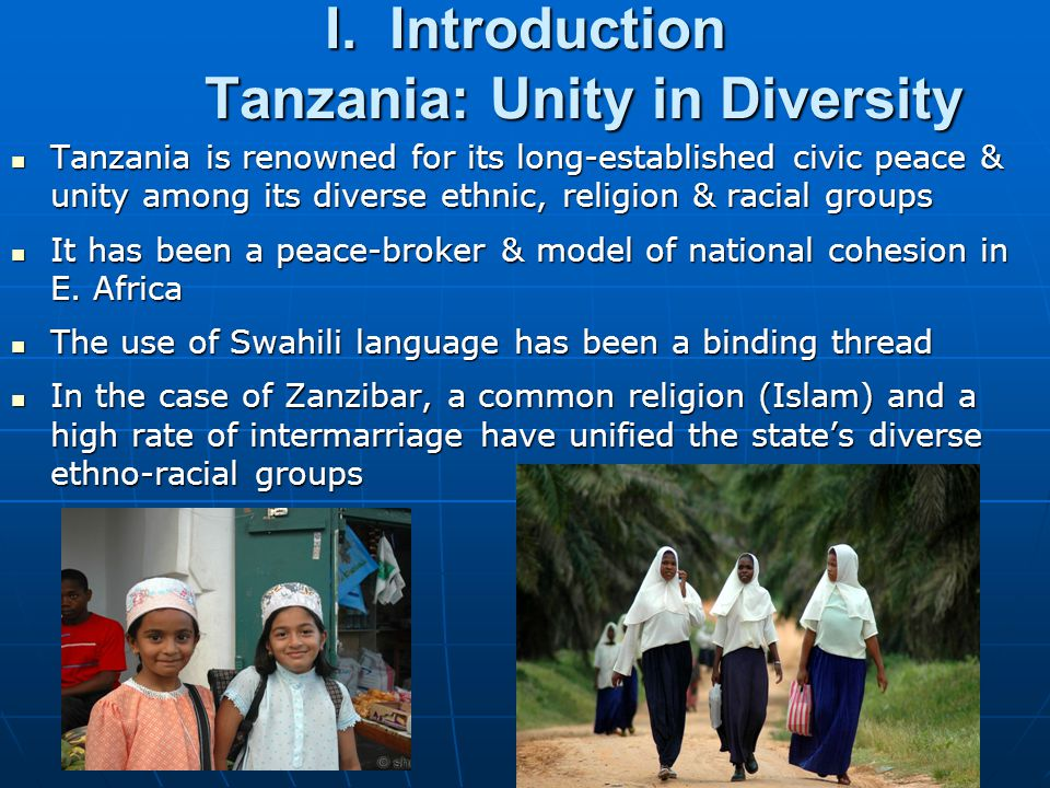 I. Introduction Tanzania: Unity in Diversity
