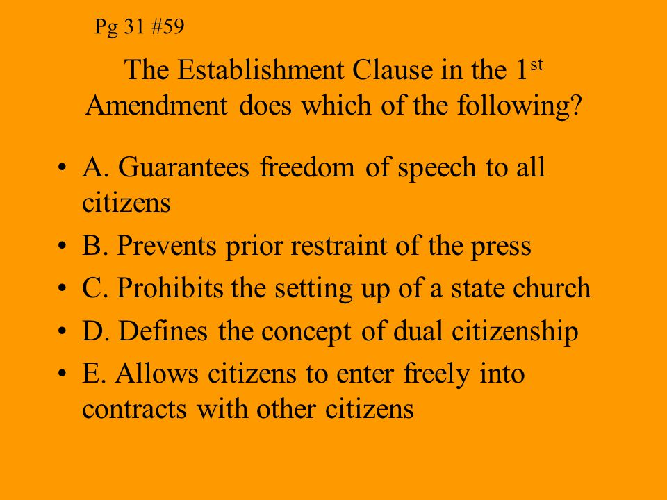 A. Guarantees freedom of speech to all citizens