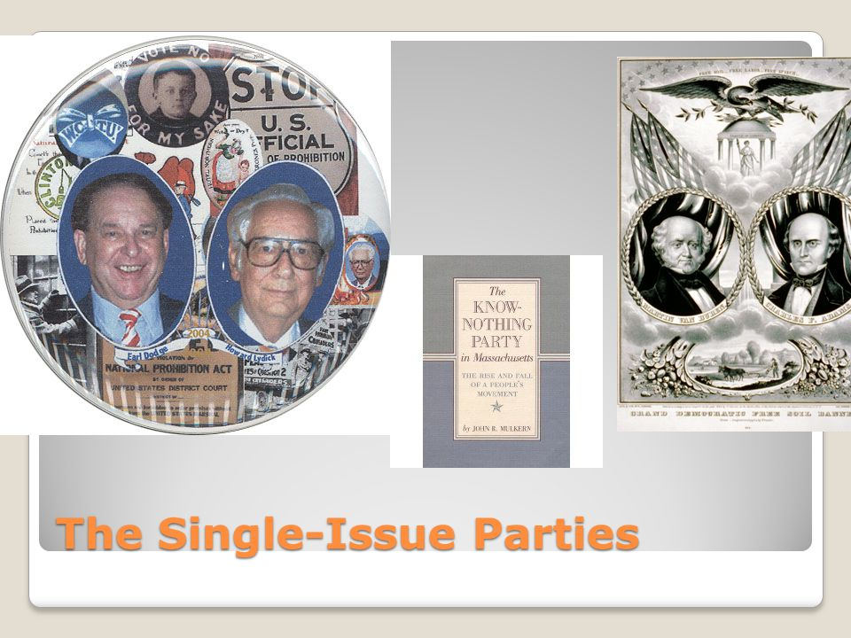 The Single-Issue Parties