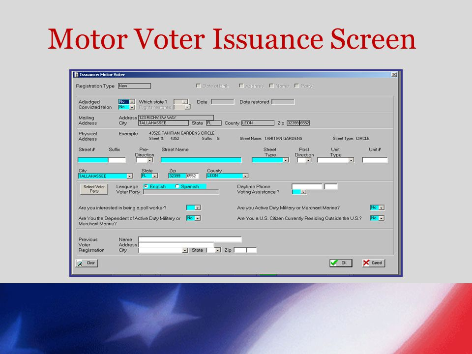 Motor Voter Issuance Screen