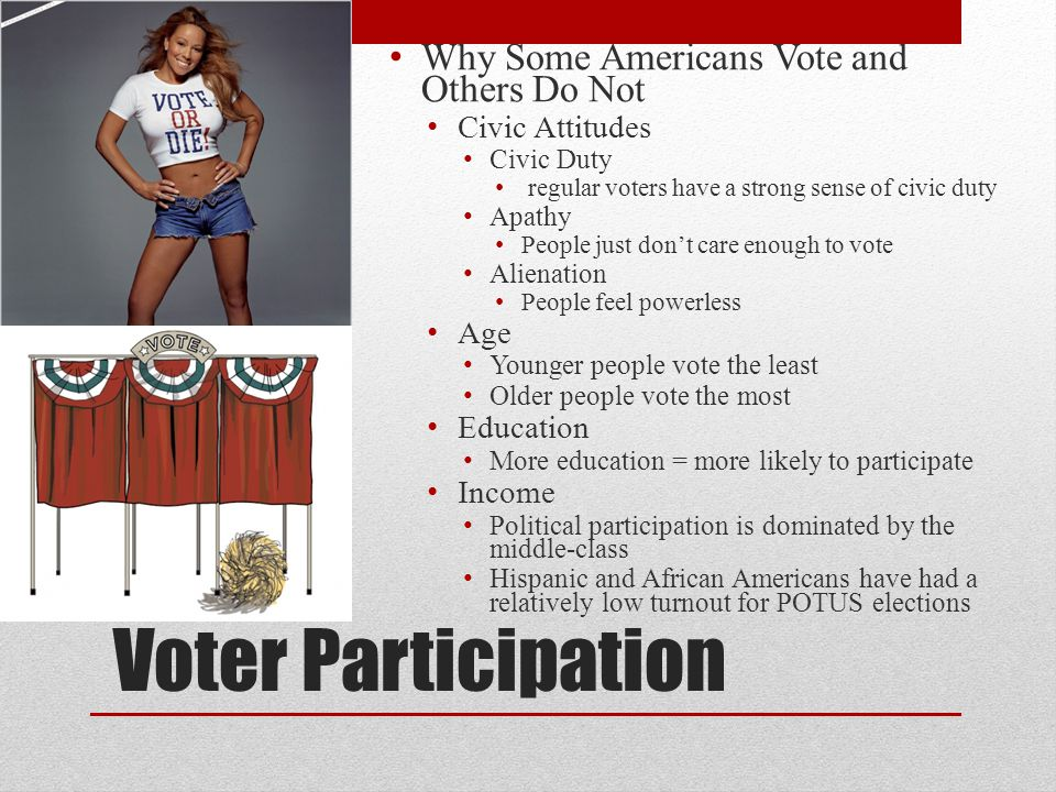 Voter Participation Why Some Americans Vote and Others Do Not