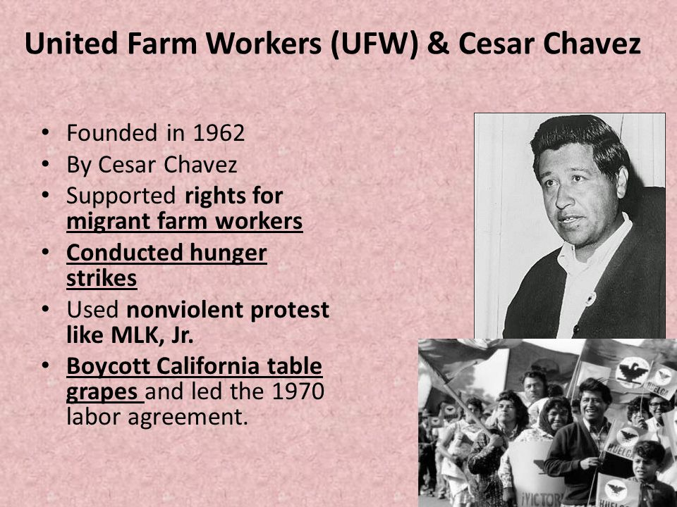 United Farm Workers (UFW) & Cesar Chavez