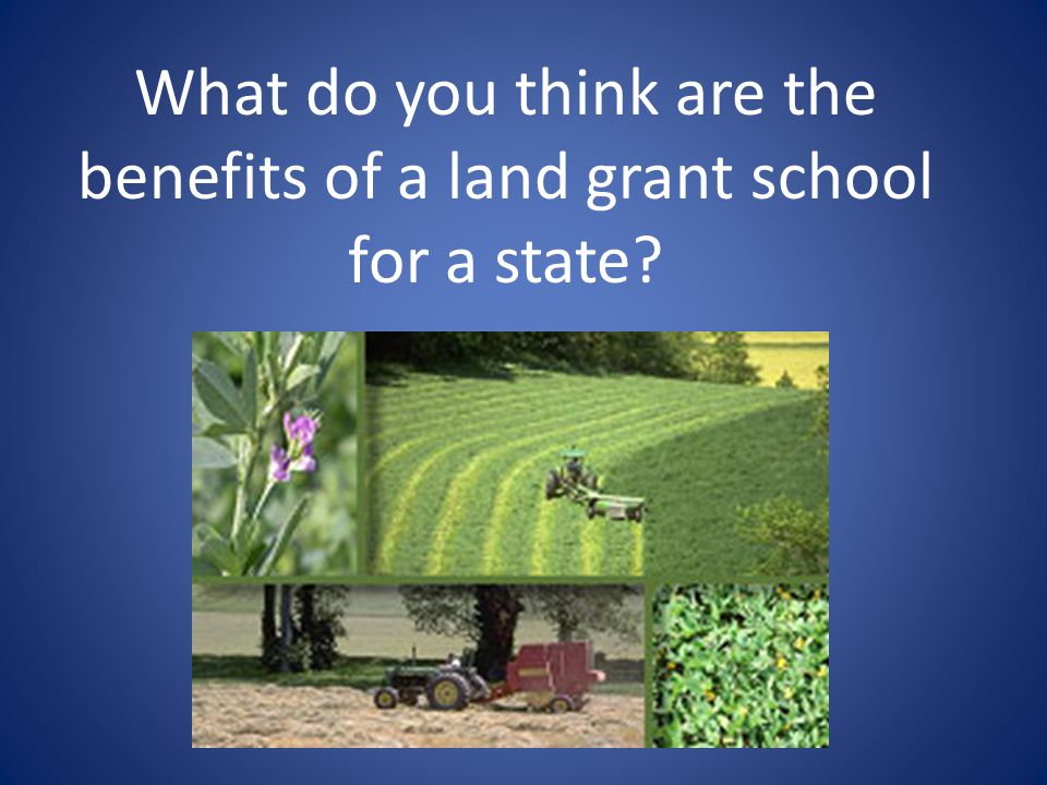 What do you think are the benefits of a land grant school for a state