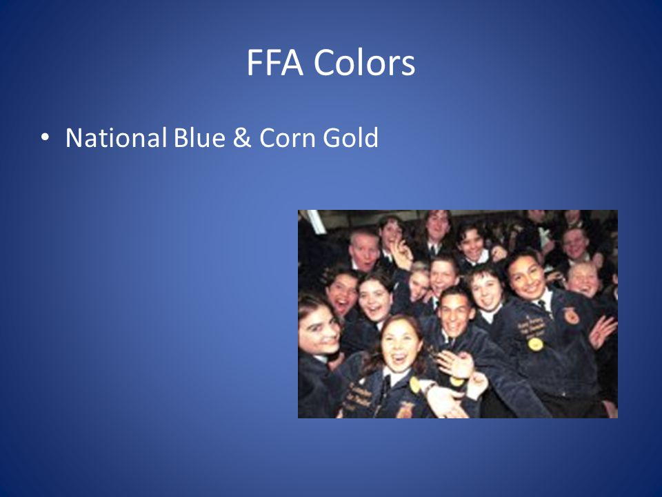 FFA Colors National Blue & Corn Gold