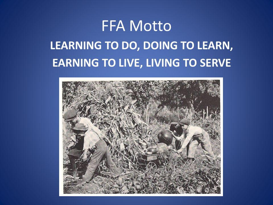LEARNING TO DO, DOING TO LEARN, EARNING TO LIVE, LIVING TO SERVE