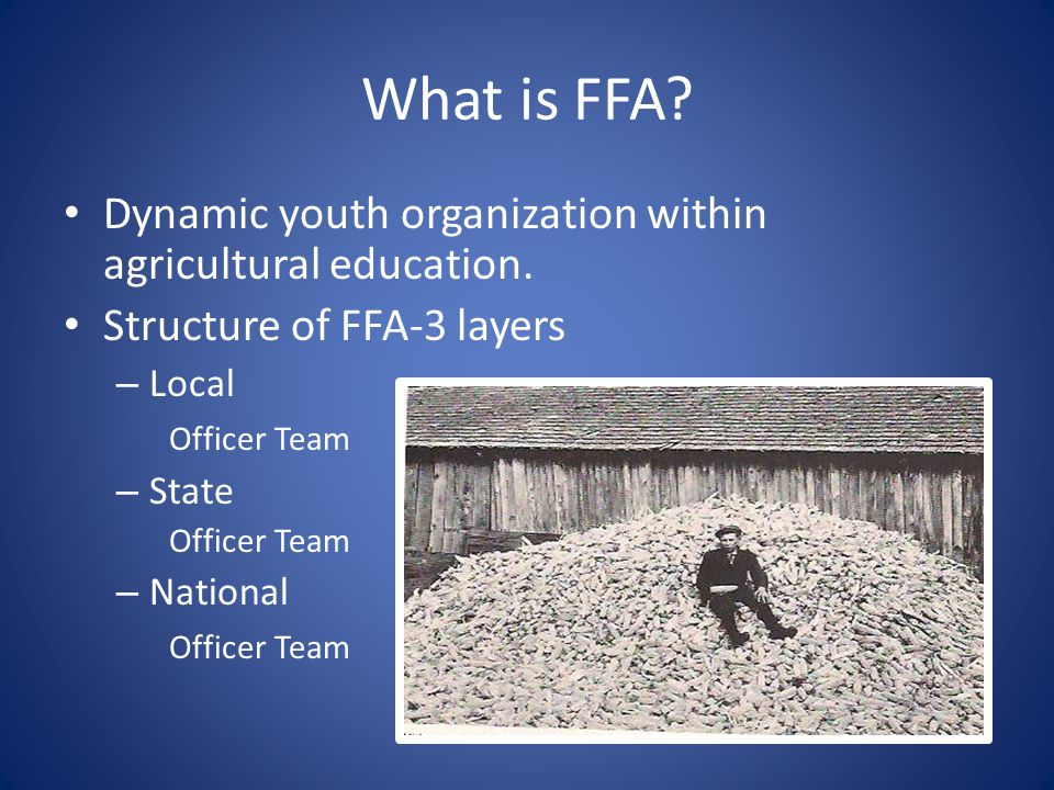 What is FFA Dynamic youth organization within agricultural education.