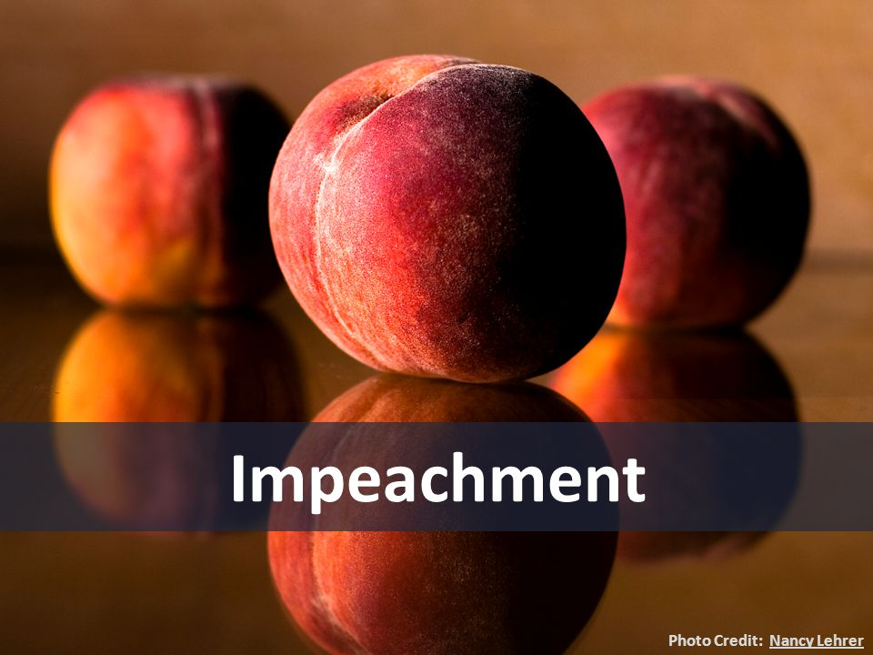 Impeachment Photo Credit: Nancy Lehrer