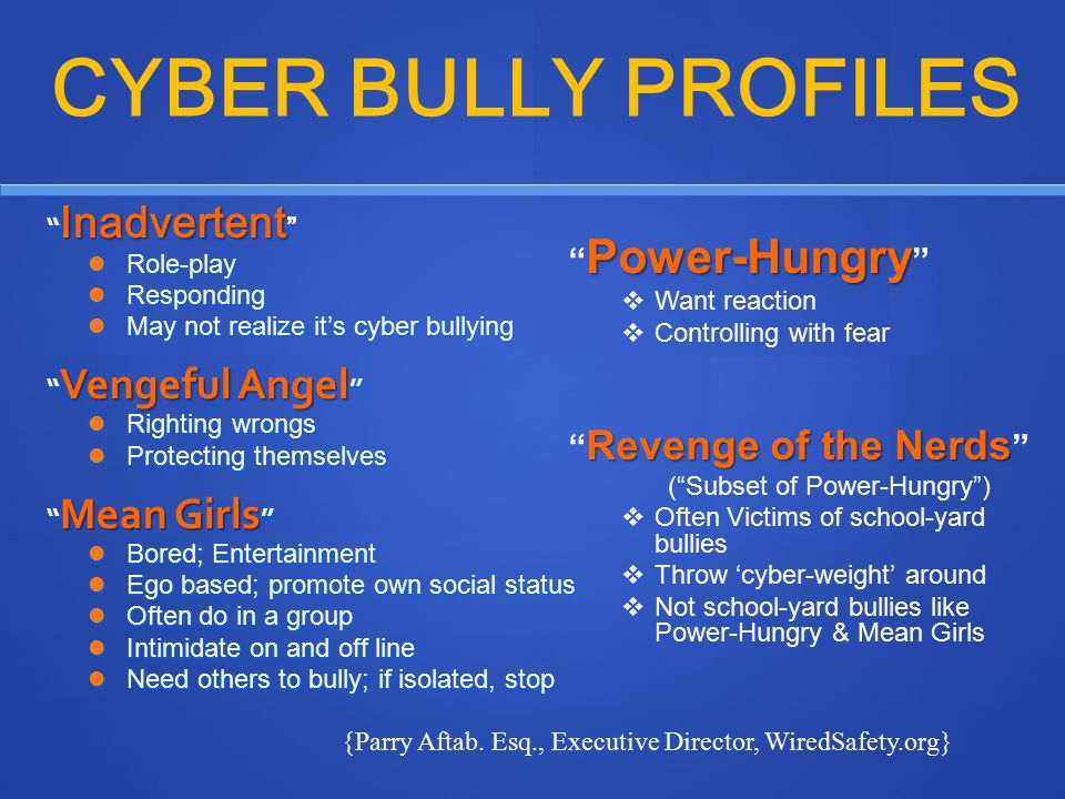 CYBER BULLY PROFILES Power-Hungry Revenge of the Nerds