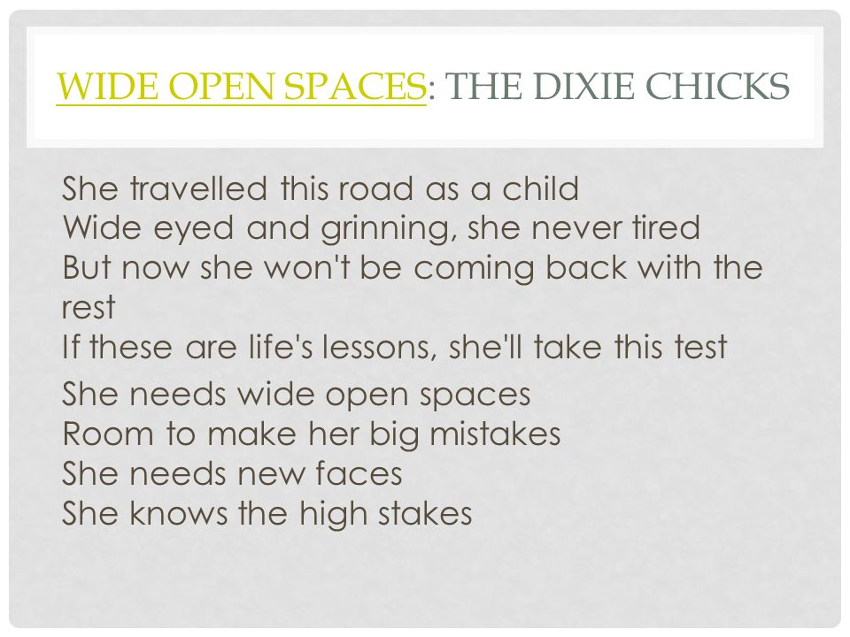 Wide open Spaces: The Dixie Chicks