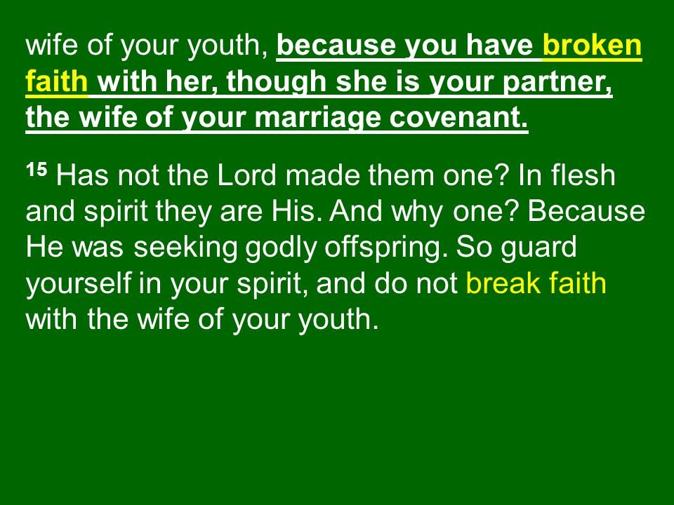 wife of your youth, because you have broken faith with her, though she is your partner, the wife of your marriage covenant.