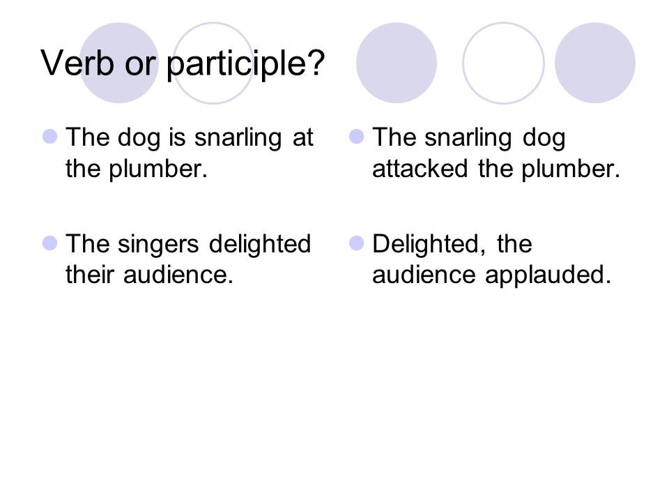 Verb or participle The dog is snarling at the plumber.