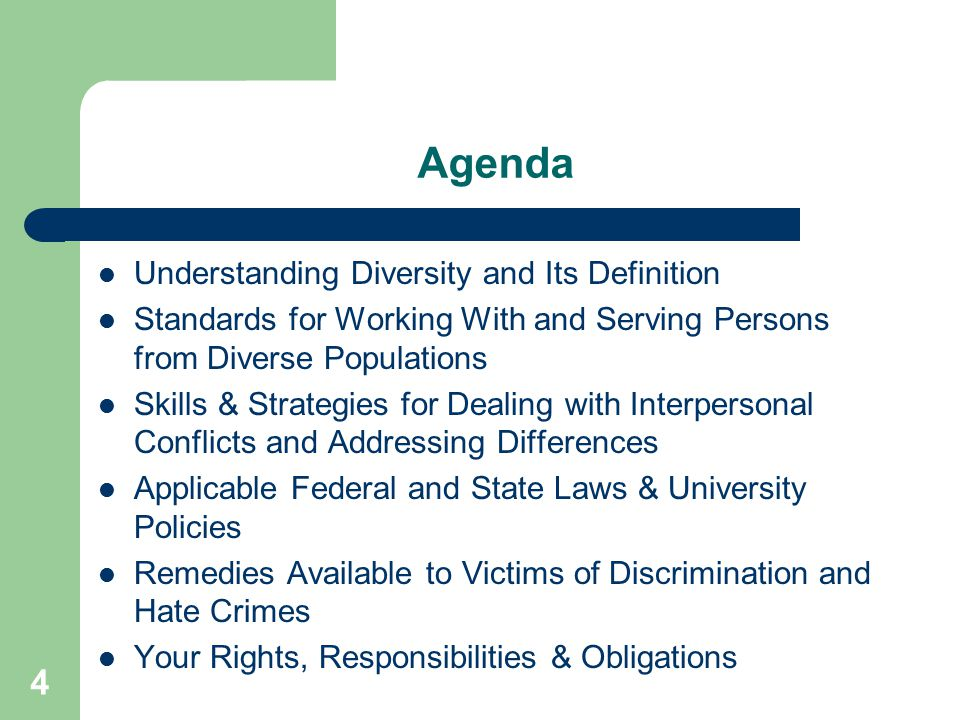 Agenda Understanding Diversity and Its Definition