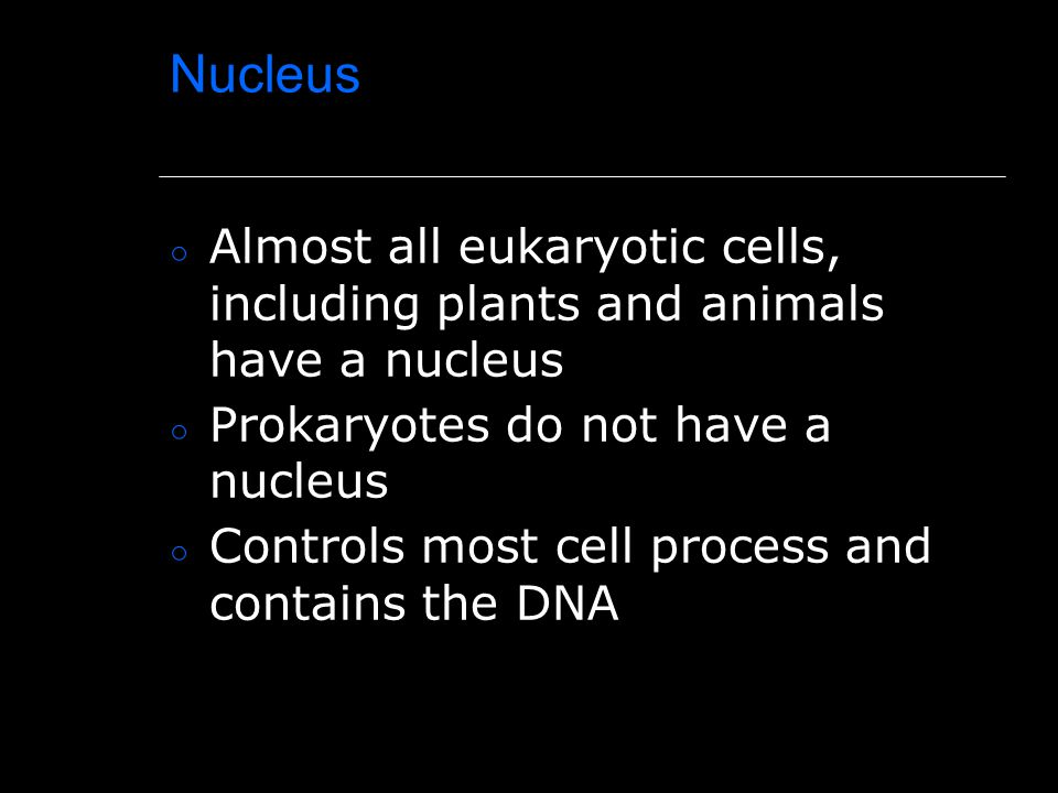 Nucleus Almost all eukaryotic cells, including plants and animals have a nucleus. Prokaryotes do not have a nucleus.