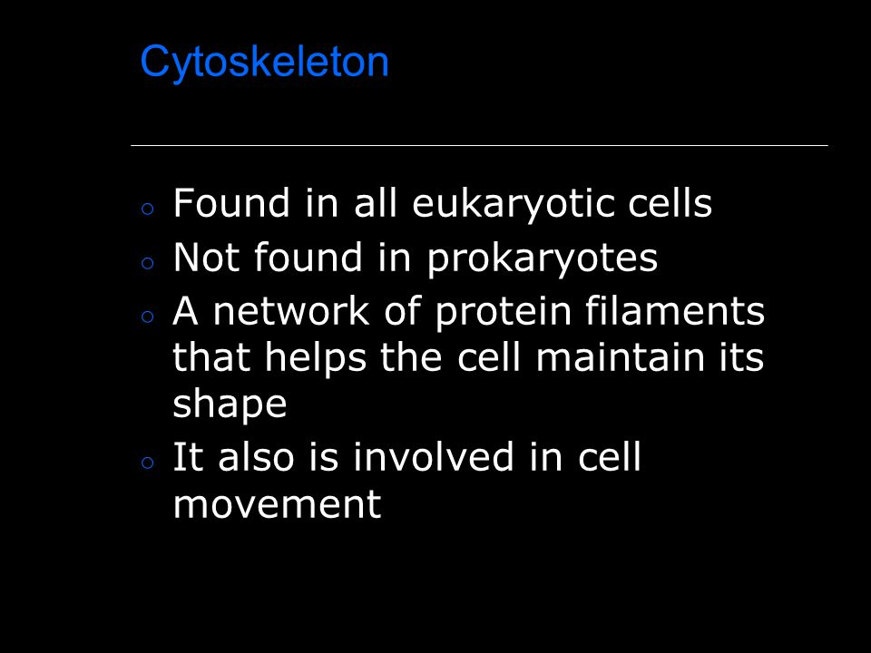Cytoskeleton Found in all eukaryotic cells Not found in prokaryotes