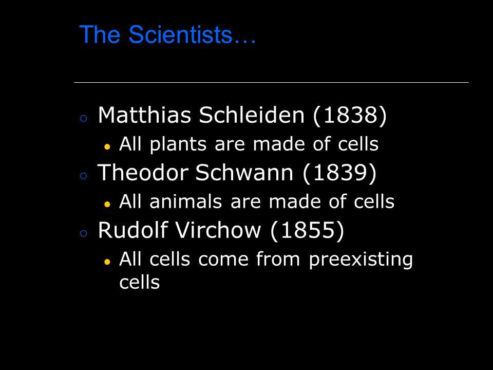 The Scientists… Matthias Schleiden (1838) Theodor Schwann (1839)