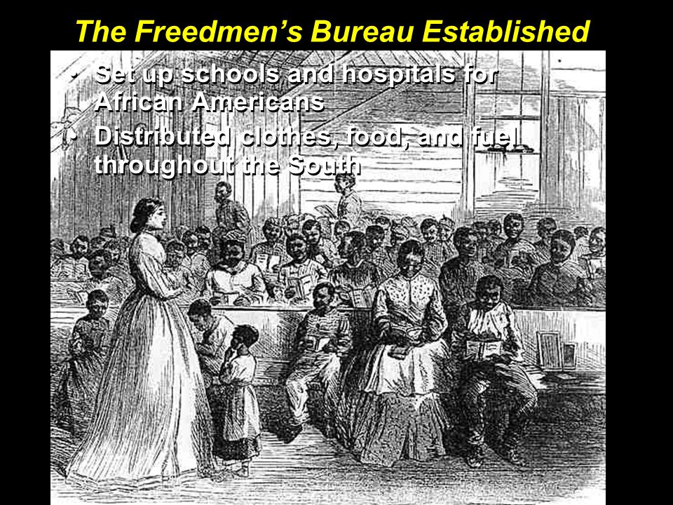 The Freedmen's Bureau Established