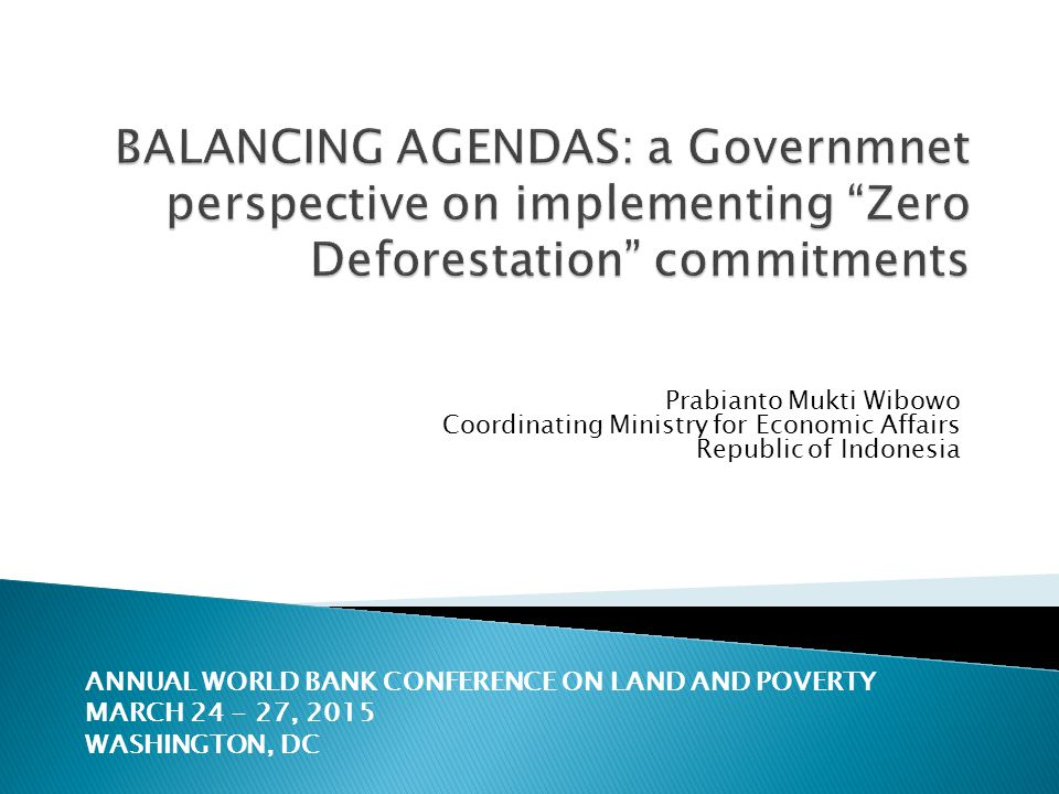 BALANCING AGENDAS: a Governmnet perspective on implementing Zero Deforestation commitments