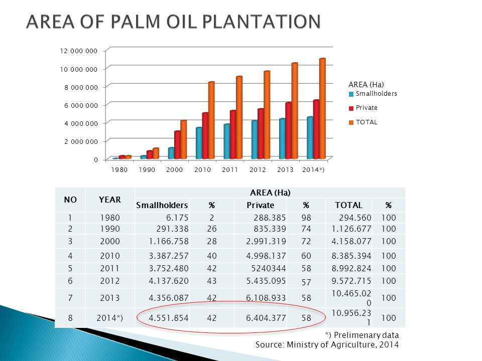 AREA OF PALM OIL PLANTATION
