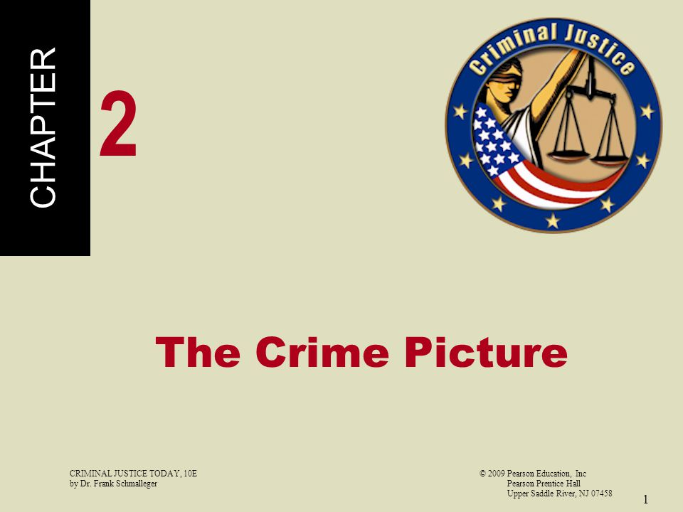 2 The Crime Picture CHAPTER