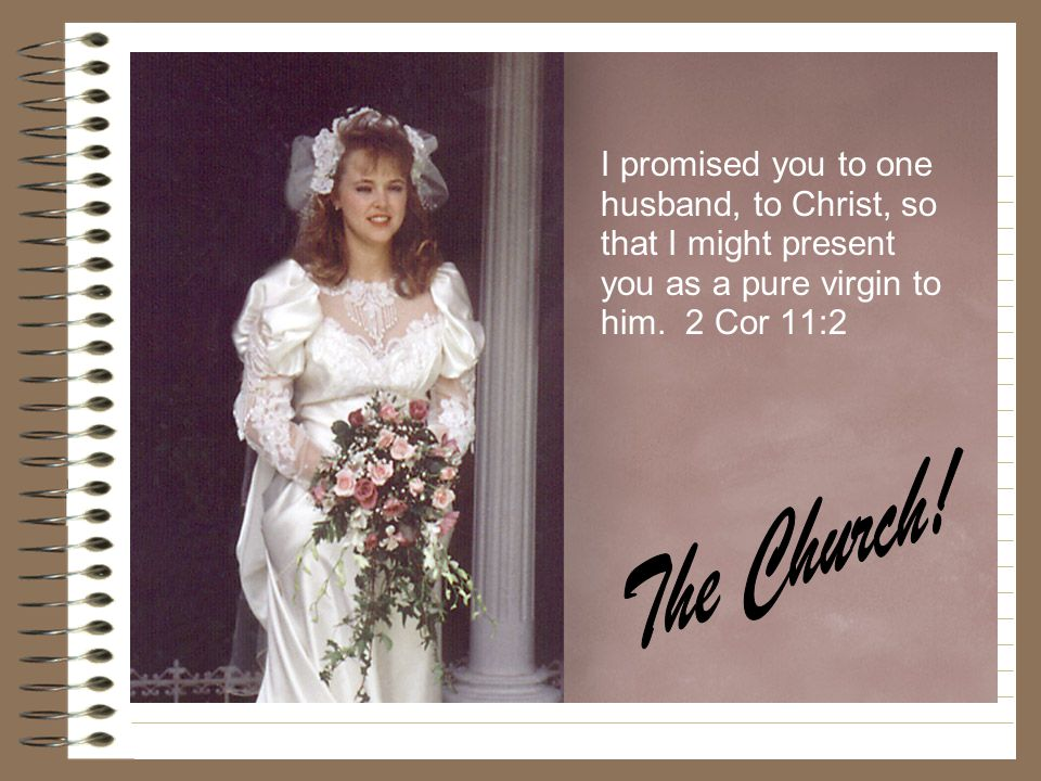 The 144,000 I promised you to one husband, to Christ, so that I might present you as a pure virgin to him. 2 Cor 11:2.