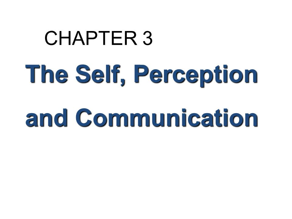 CHAPTER 3 The Self, Perception and Communication 2