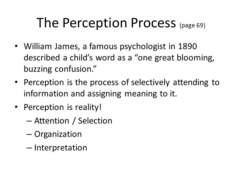 The Perception Process (page 69)
