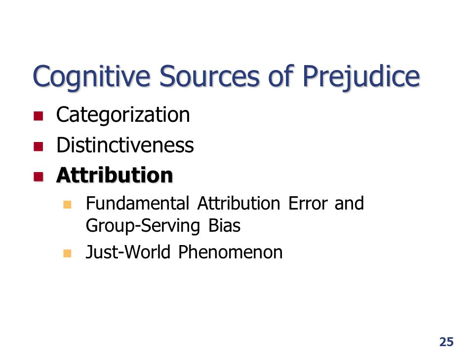 Cognitive Sources of Prejudice