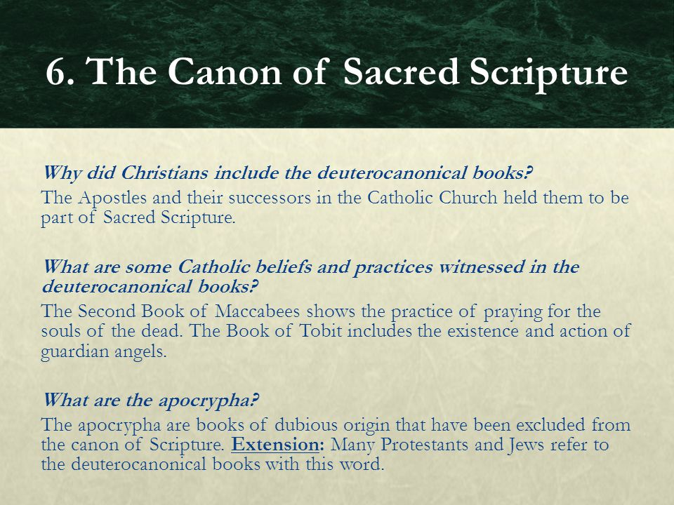 6. The Canon of Sacred Scripture