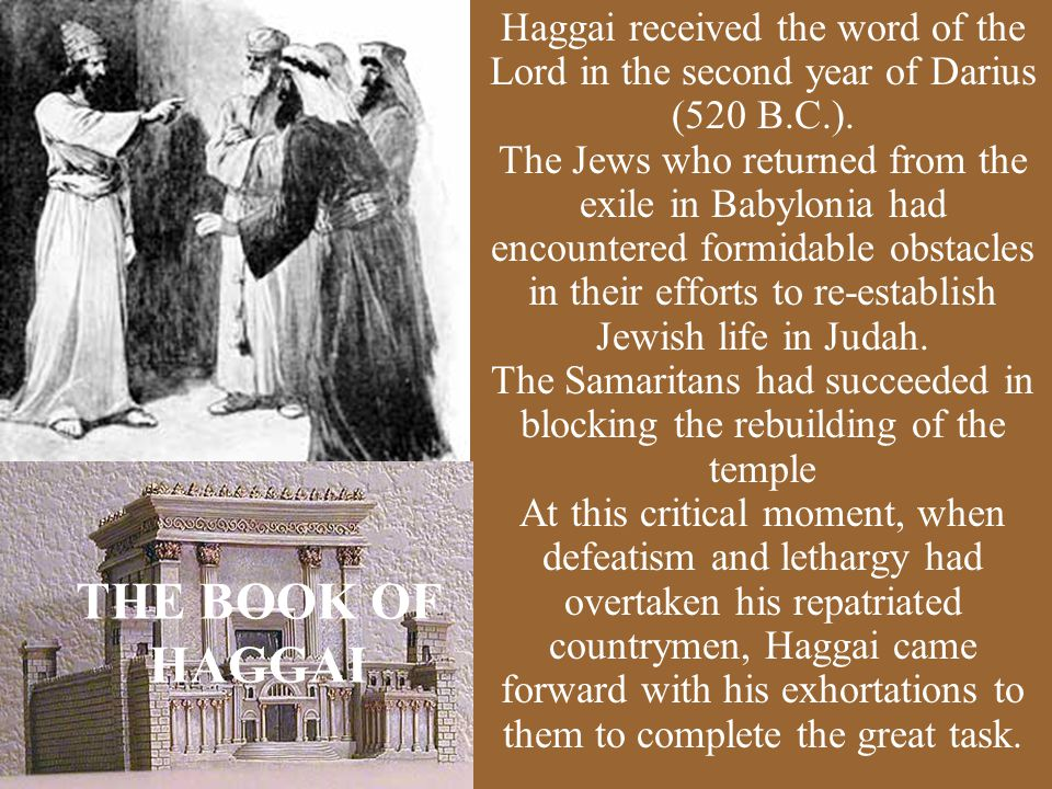 The Samaritans had succeeded in blocking the rebuilding of the temple