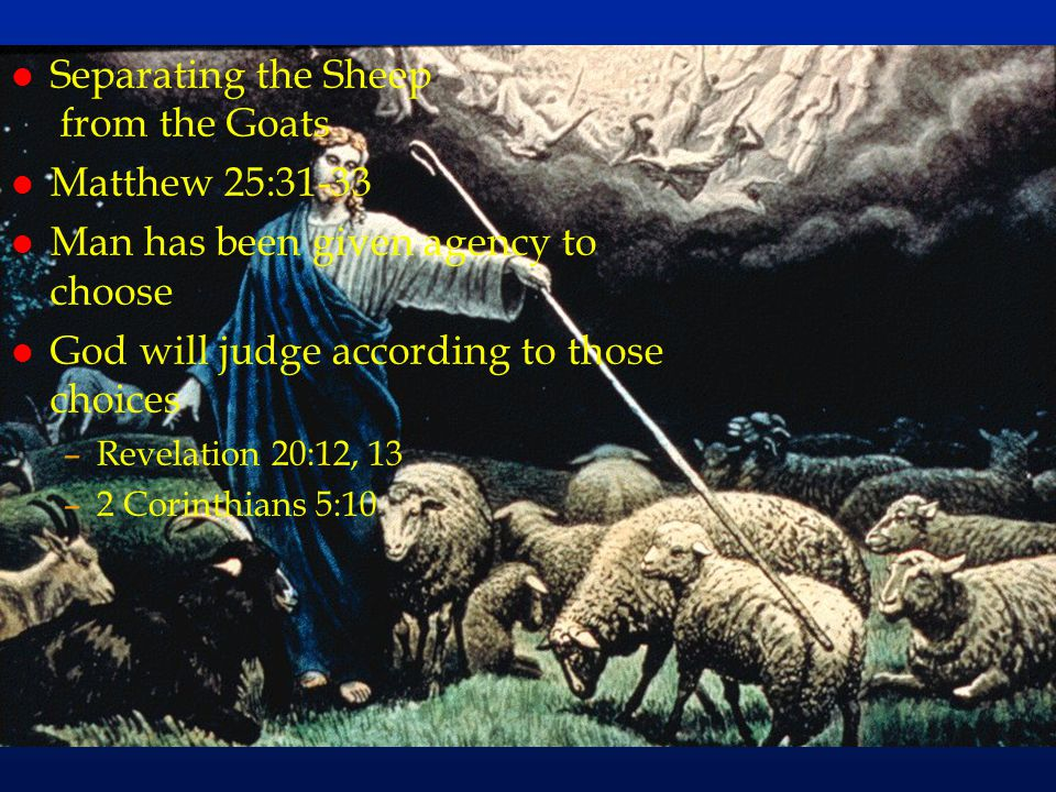 cc64 Separating the Sheep from the Goats Matthew 25:31-33