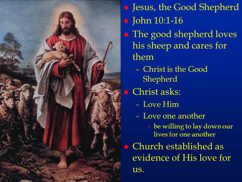 cc72 Jesus, the Good Shepherd John 10:1-16