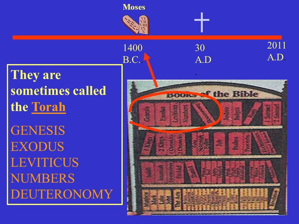They are sometimes called the Torah