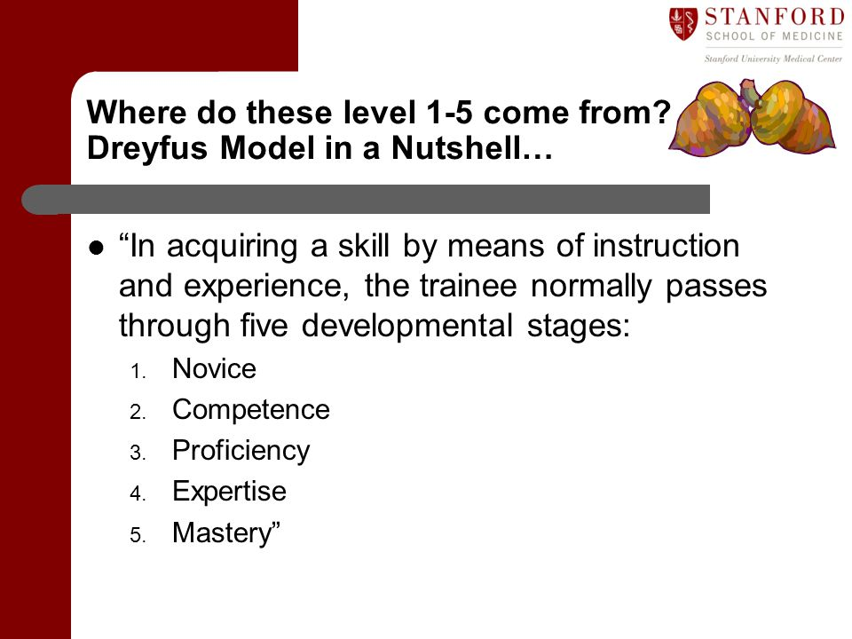 Where do these level 1-5 come from Dreyfus Model in a Nutshell…