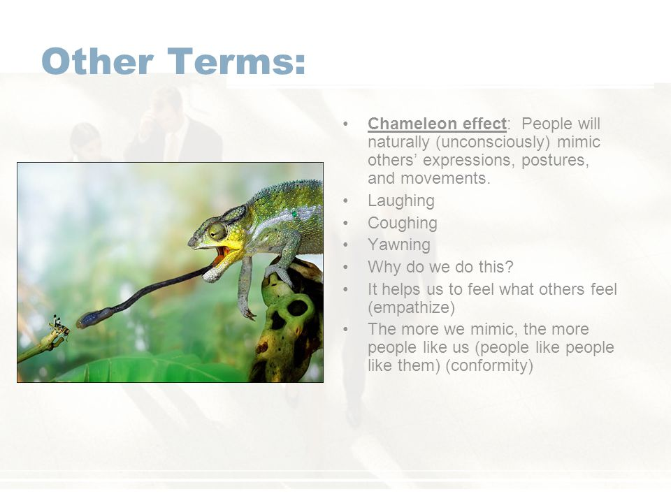 Other Terms: Chameleon effect: People will naturally (unconsciously) mimic others' expressions, postures, and movements.