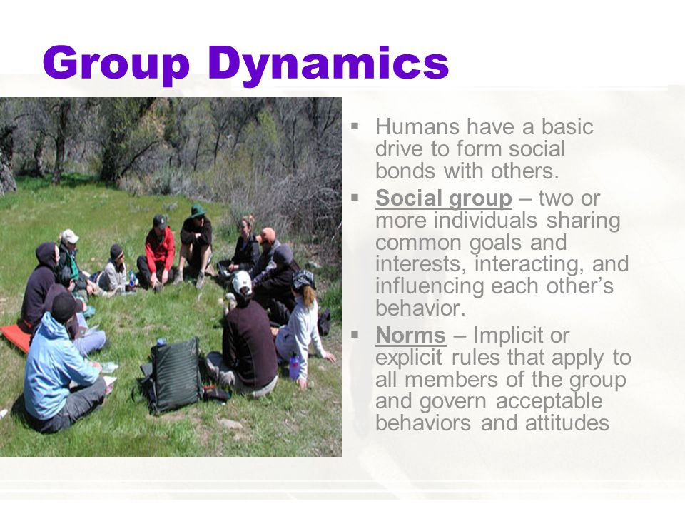 Group Dynamics Humans have a basic drive to form social bonds with others.