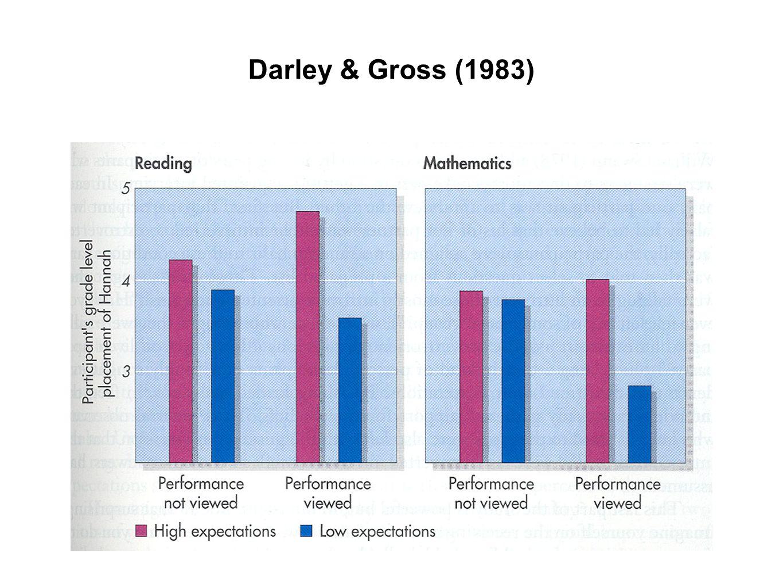 Darley & Gross (1983)