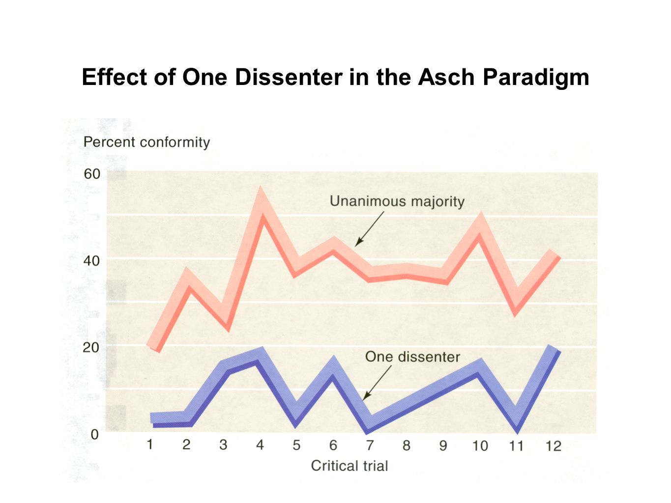 Effect of One Dissenter in the Asch Paradigm