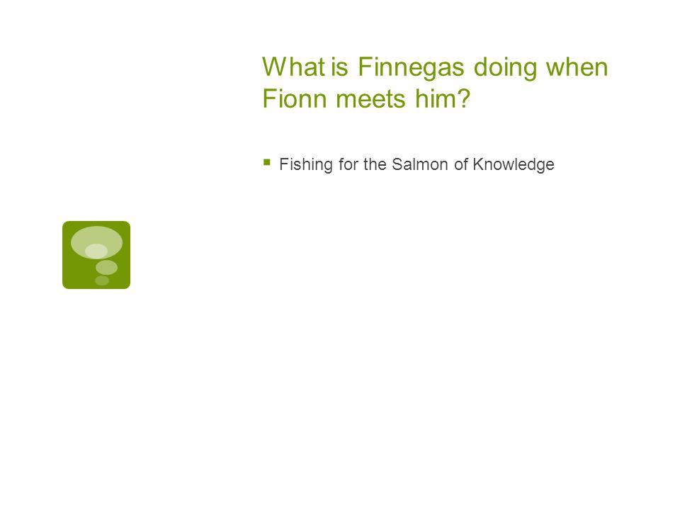 What is Finnegas doing when Fionn meets him
