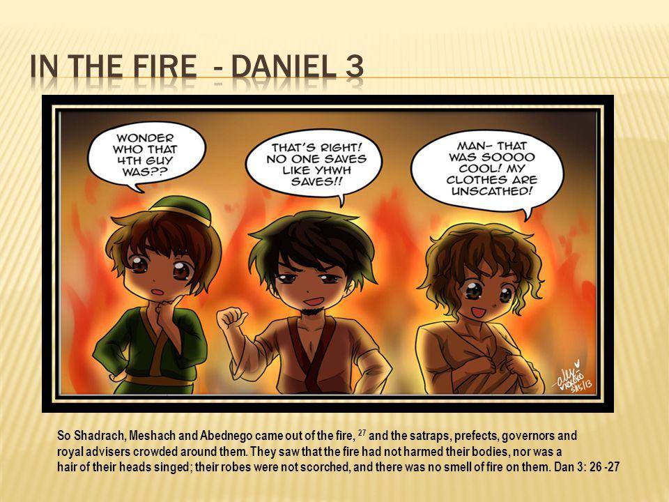 In the fire - Daniel 3