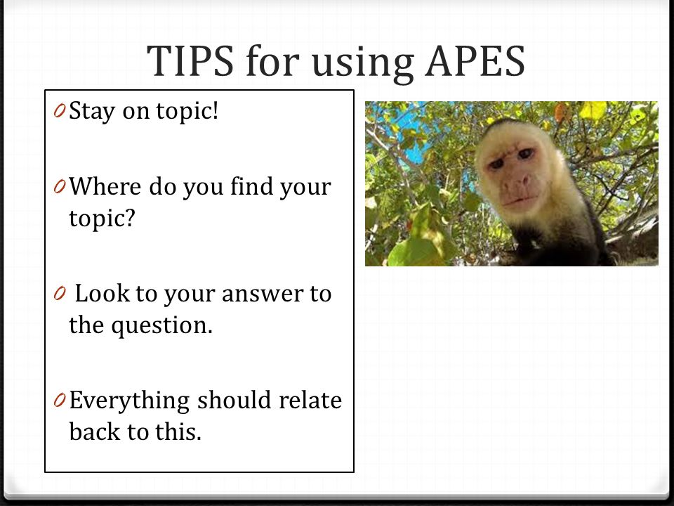 TIPS for using APES Stay on topic! Where do you find your topic