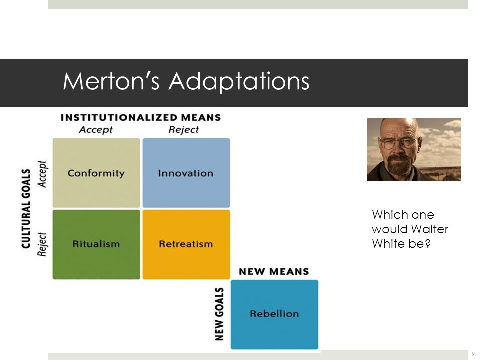 Merton's Adaptations Which one would Walter White be