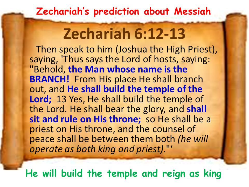 Zechariah's prediction about Messiah