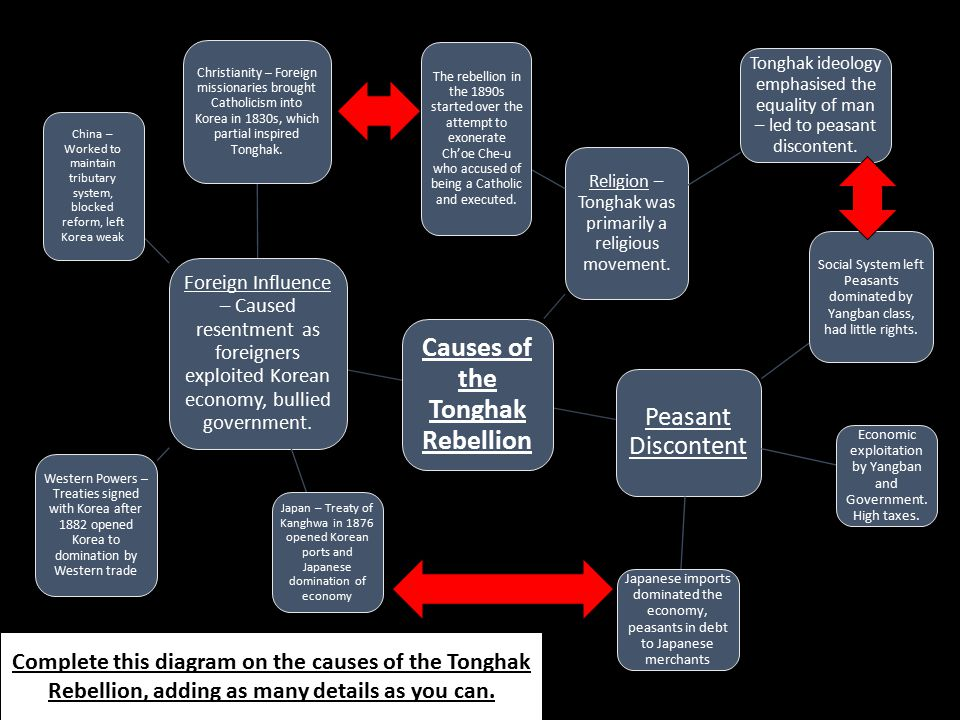 Causes of the Tonghak Rebellion