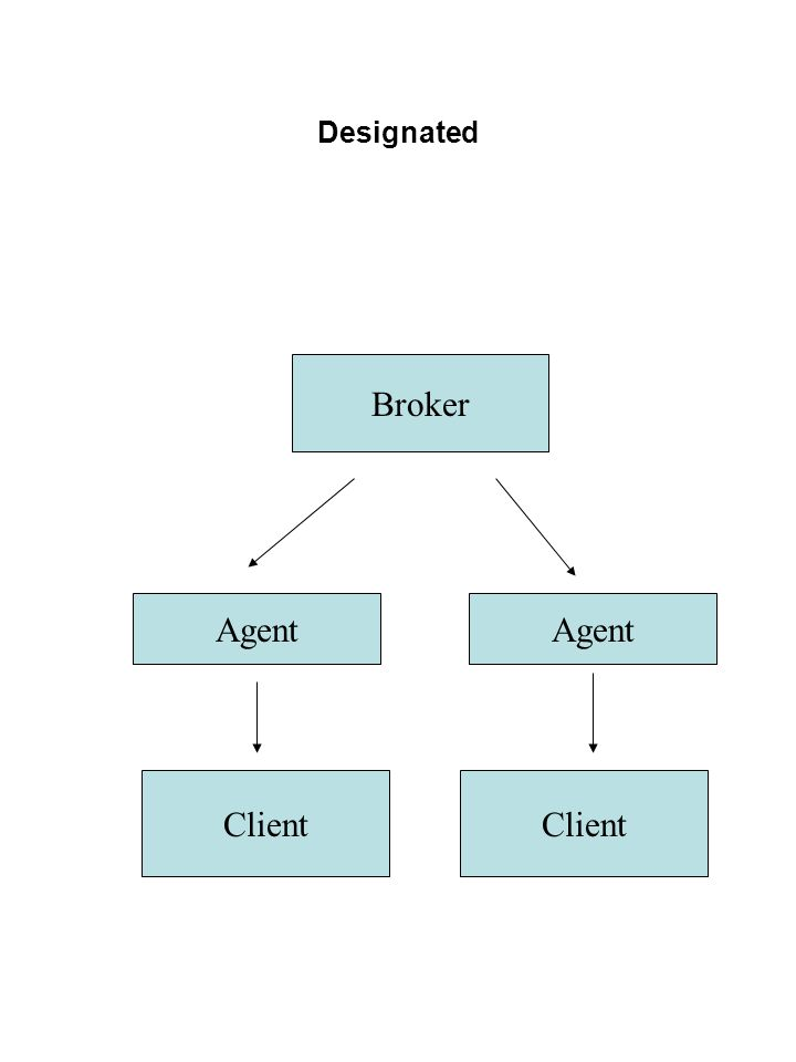 Designated Broker Agent Agent Client Client