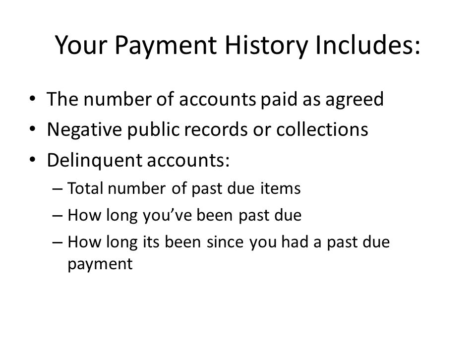 Your Payment History Includes: