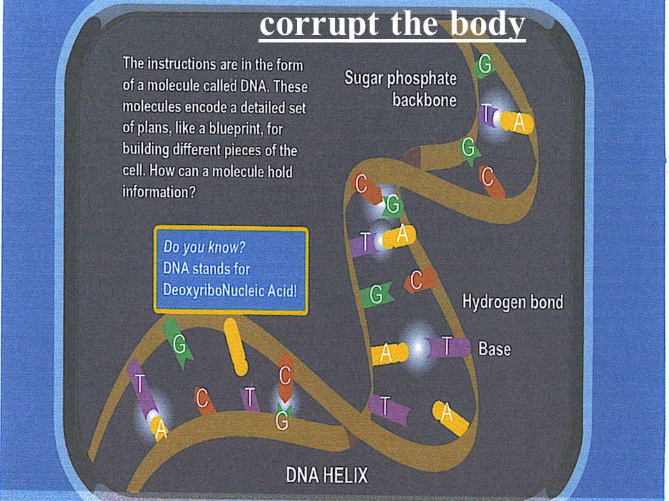 corrupt the body
